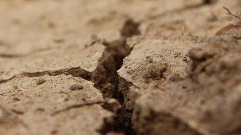 Wat als de bodem compleet uitdroogt?